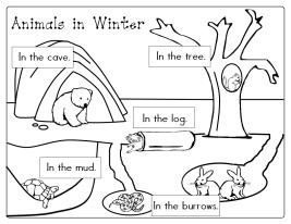 Coloriage animaux qui hibernent