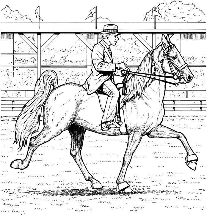 Coloriage cheval dressage