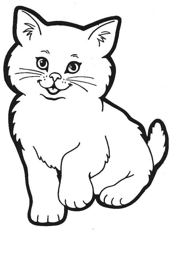Coloriage le chat